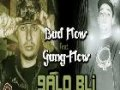Bad-Flow Feat GanG Flow 2011
